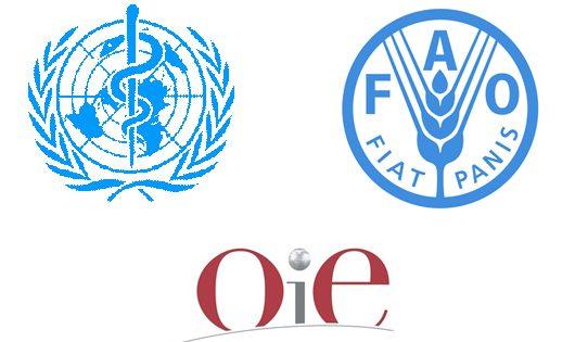 OIE OMS FAO