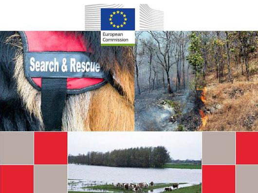 La preparazione dei Servizi veterinari Ue alle emergenze non epidemiche. Emervet nel rapporto DG Sanco