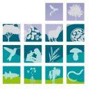 biodiversità alimentare