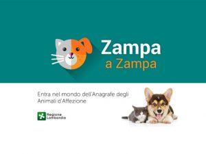 zampa a zampa