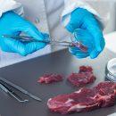 Ispezione delle carni